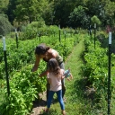 Jessica Stetter and Amaya Wren Pack pick peppers from the vine at Simply Growing Farm.