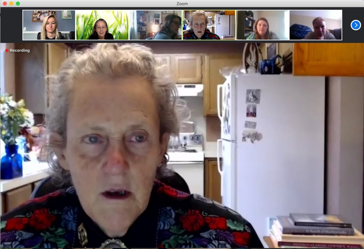 Zoom presentation with Dr. Temple Grandin