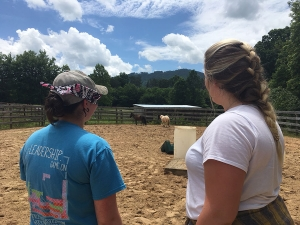 Graduate students Jessica Crandell '16, left, and Danielle Joyce observe the horses at Lazy Acres Farm during the Equine Assisted Learning and Psychotherapy course. The seeing student practices describing the horses' actions to the blindfolded student using plain language. Through this trust-building exercise, students learned how to describe behavior without interpretation. Photo by Rebekah Saylors