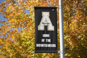 Autumn flag on Rivers Street